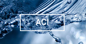 ACI TECHNICAL (PTY) LIMITED<br> - ACI -